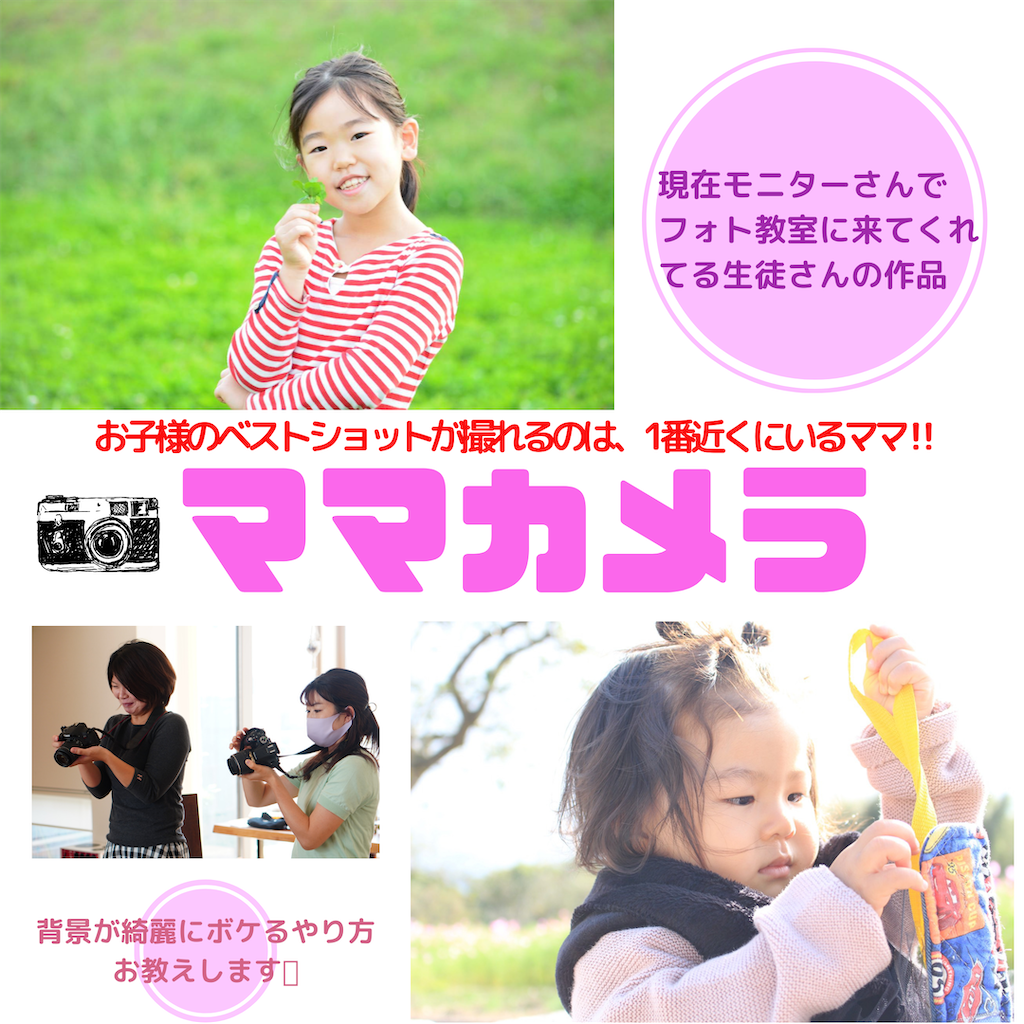 f:id:manababy:20201010184242p:image