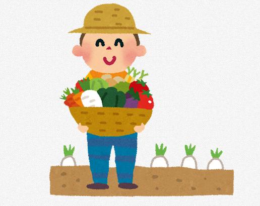 家庭菜園 ベランダ プランター 夏野菜