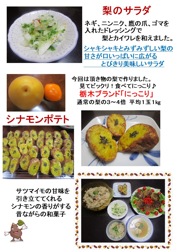 f:id:manakoko:20191114001206j:plain