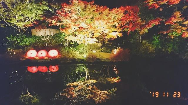 f:id:manami-okochi:20191125153932j:image