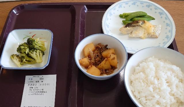 f:id:manami-okochi:20200305221114j:image