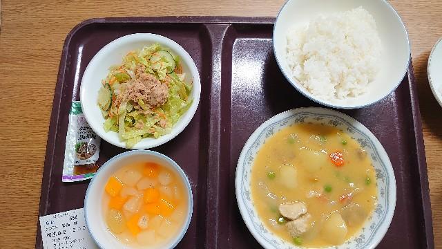 f:id:manami-okochi:20200305221140j:image