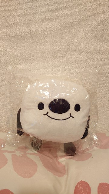 f:id:manami-okochi:20201105182118j:image