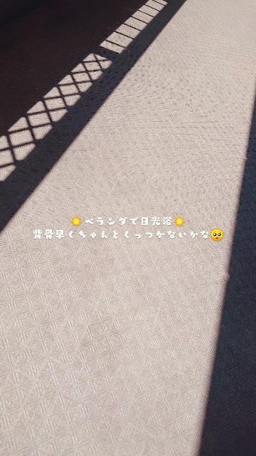 f:id:manami-okochi:20210411144355j:image