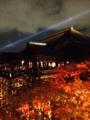 京都新聞写真コンテスト 清水寺光の和