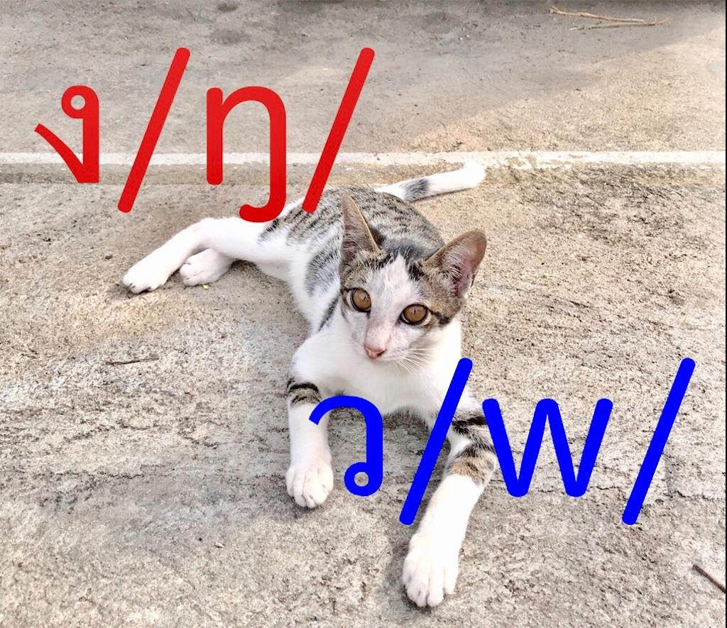 f:id:manao-life:20180926234056j:image