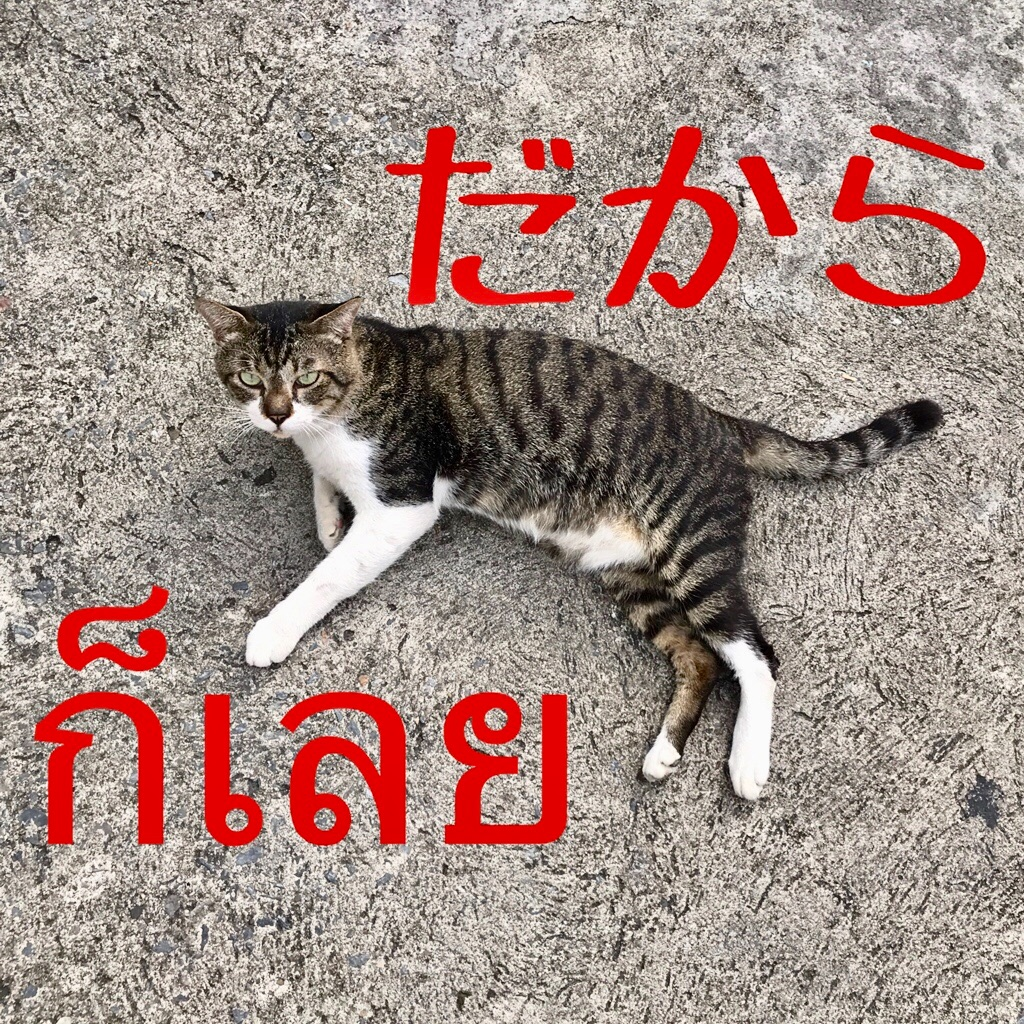f:id:manao-life:20181018232616j:image