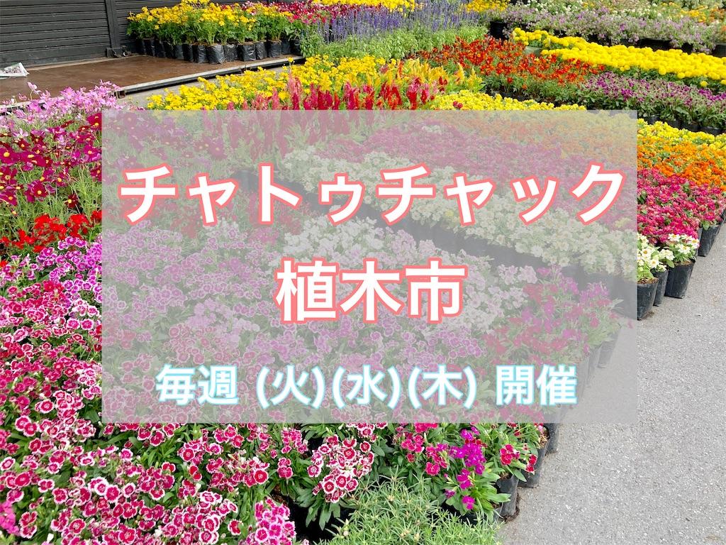 f:id:manao-life:20210211192229j:image