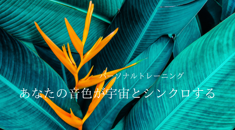 f:id:manatoyoga:20200409003245p:plain