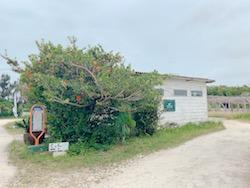 海ぶどう養殖場,海ん道