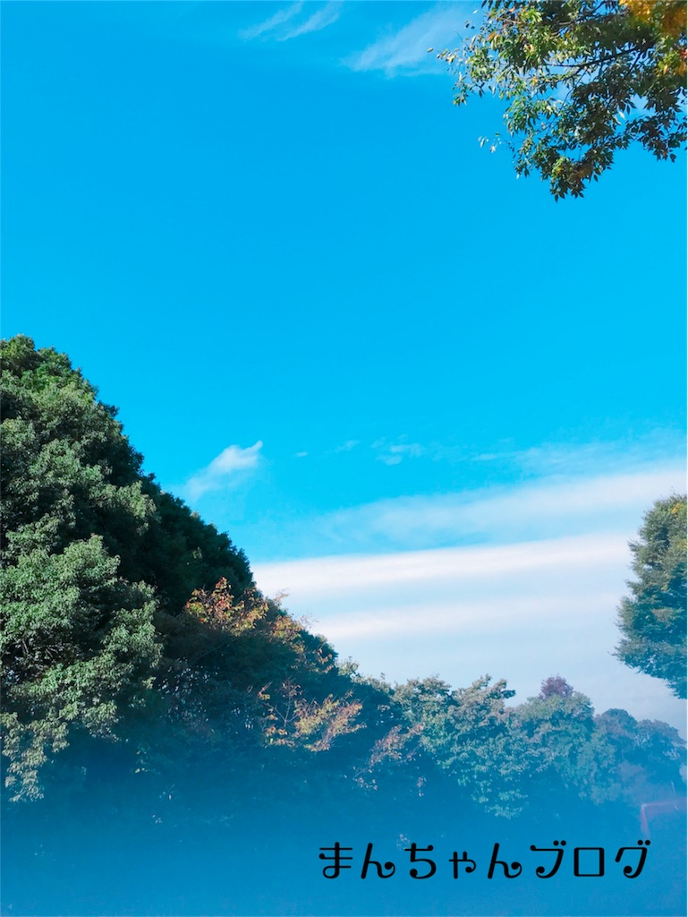 f:id:manchan87:20171101233035j:image