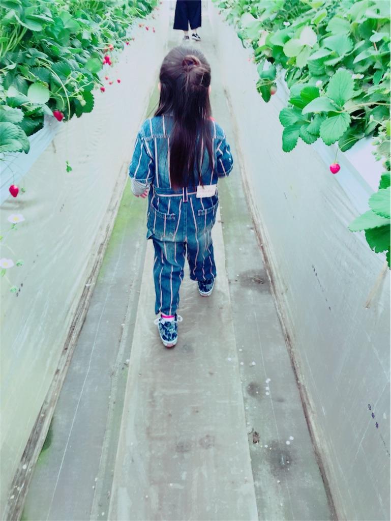 f:id:manchan87:20180409101937j:image