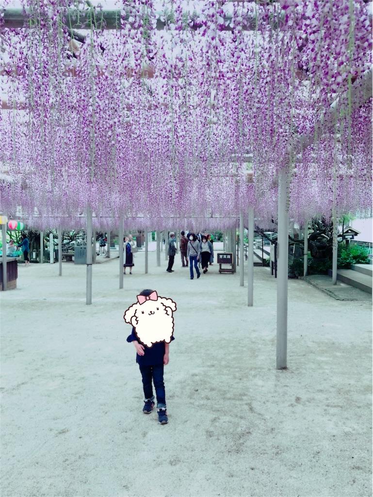 f:id:manchan87:20180421112612j:image