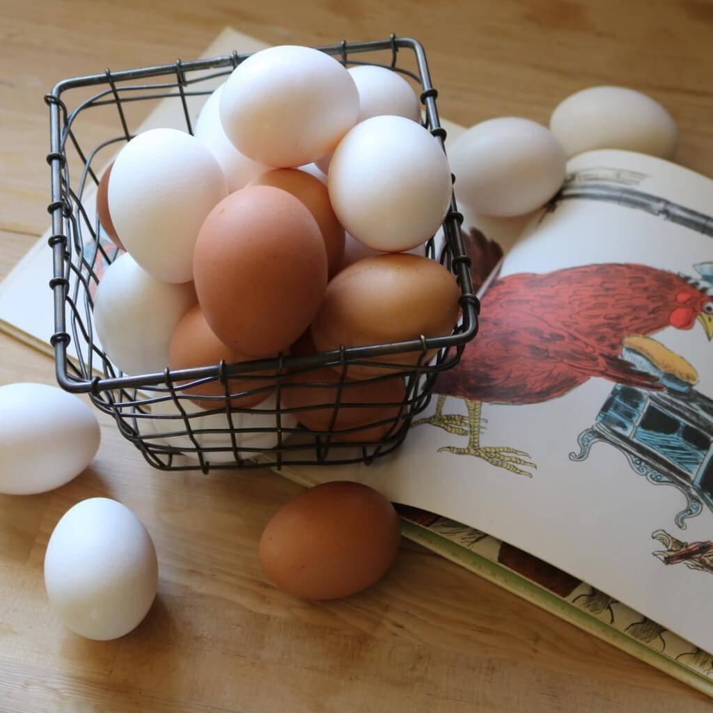 卵があれば何とかなるっ! 超簡単から豪華に見えるものまで、ホマレ姉さんの節約「玉子レシピ」
