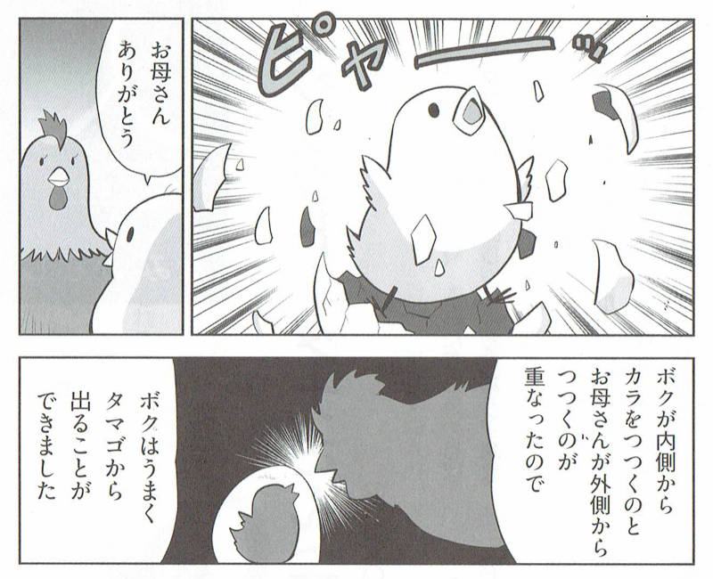 f:id:manga-imaking:20210302172509j:plain