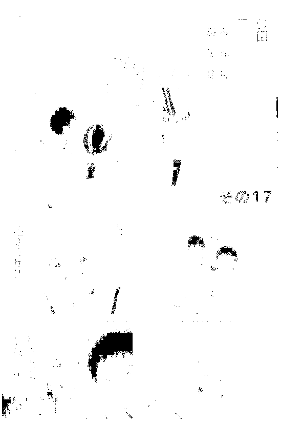 f:id:manga-ruden:20161016213243p:plain