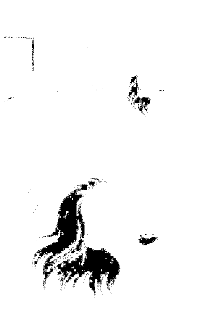 f:id:manga-ruden:20161017200340p:plain