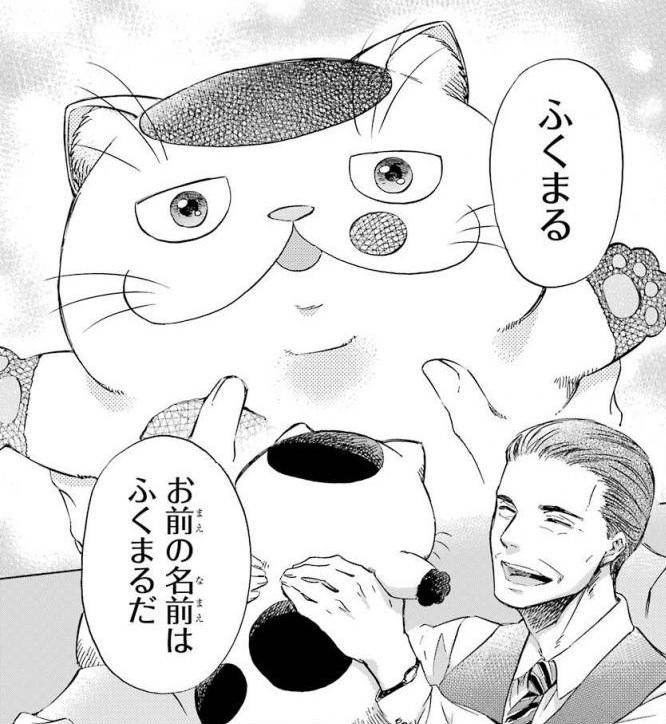 f:id:manga_suki_chan:20180510235602j:plain:w300