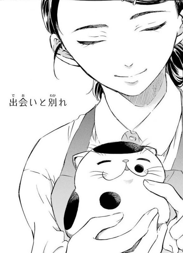 f:id:manga_suki_chan:20180511001954j:plain:w300