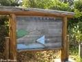 20150617 ベンゼ湿原①(つがる市木造館岡)