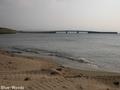 20150617 出来島海岸①(つがる市木造出来島)