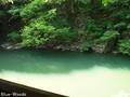20160606 岩屋観世音②(西目屋村田代)