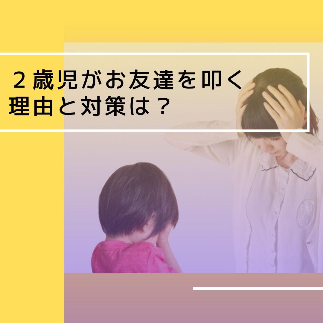 2歳児が他の子を叩く 理由と対策