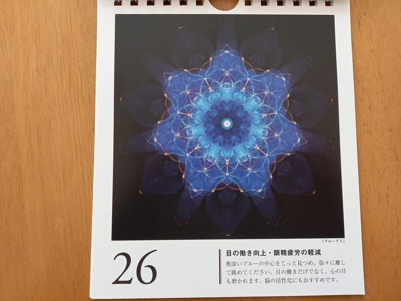 f:id:mannaka2:20210128143812j:plain
