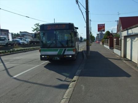 P7085618_s