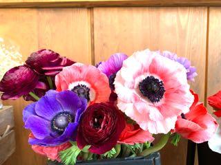 f:id:many-2-flowers:20190411213717j:plain