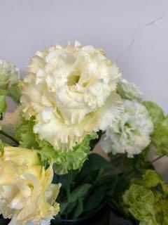 f:id:many-2-flowers:20190413211140j:plain