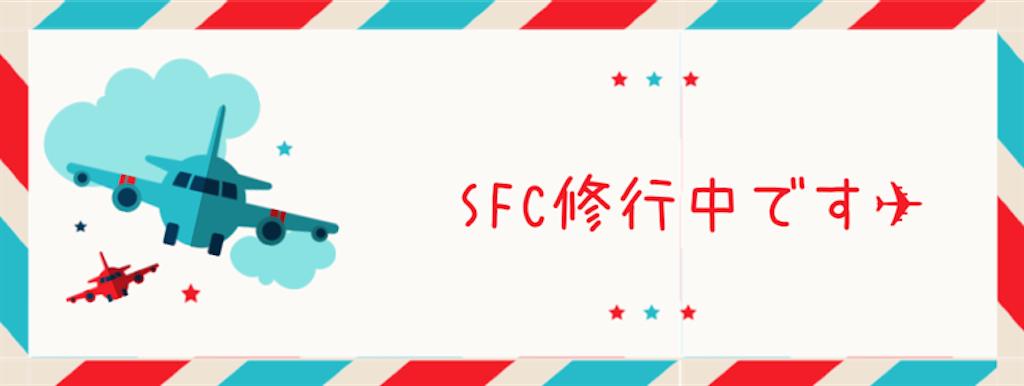 f:id:manychan:20190216121400p:image