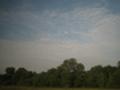 メンフィスの雲
