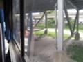 メンフィス->ニューオーリンズの車窓から