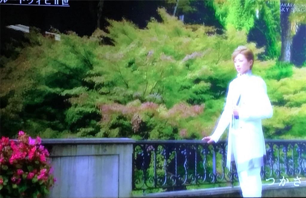 f:id:maoyamaguchi6:20170527093112j:image