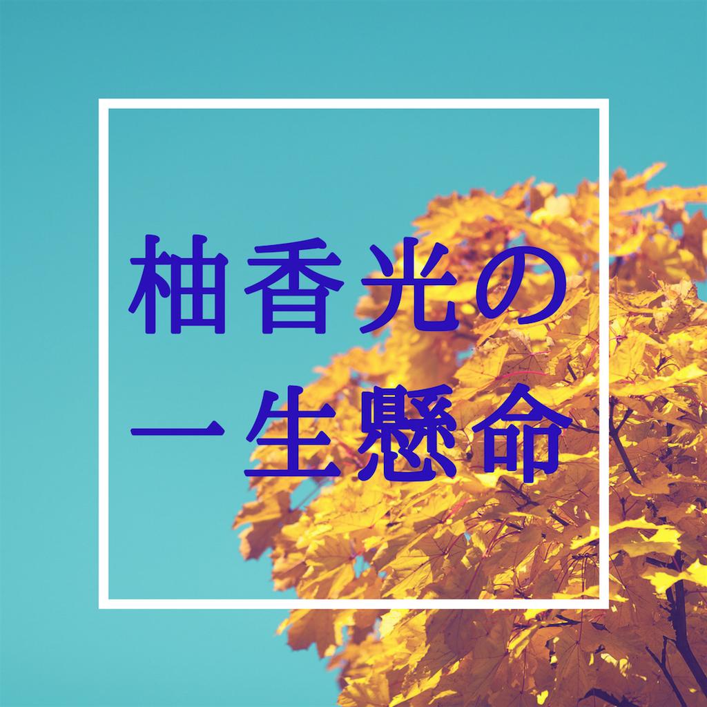 f:id:maoyamaguchi6:20180515171746p:image
