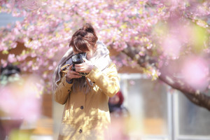 カメラ女子ポートレート桜