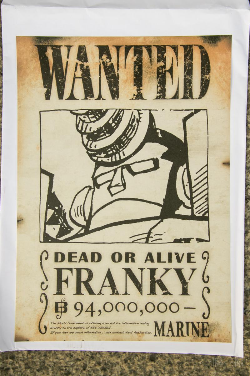 ワンピース 手配書 フランキー