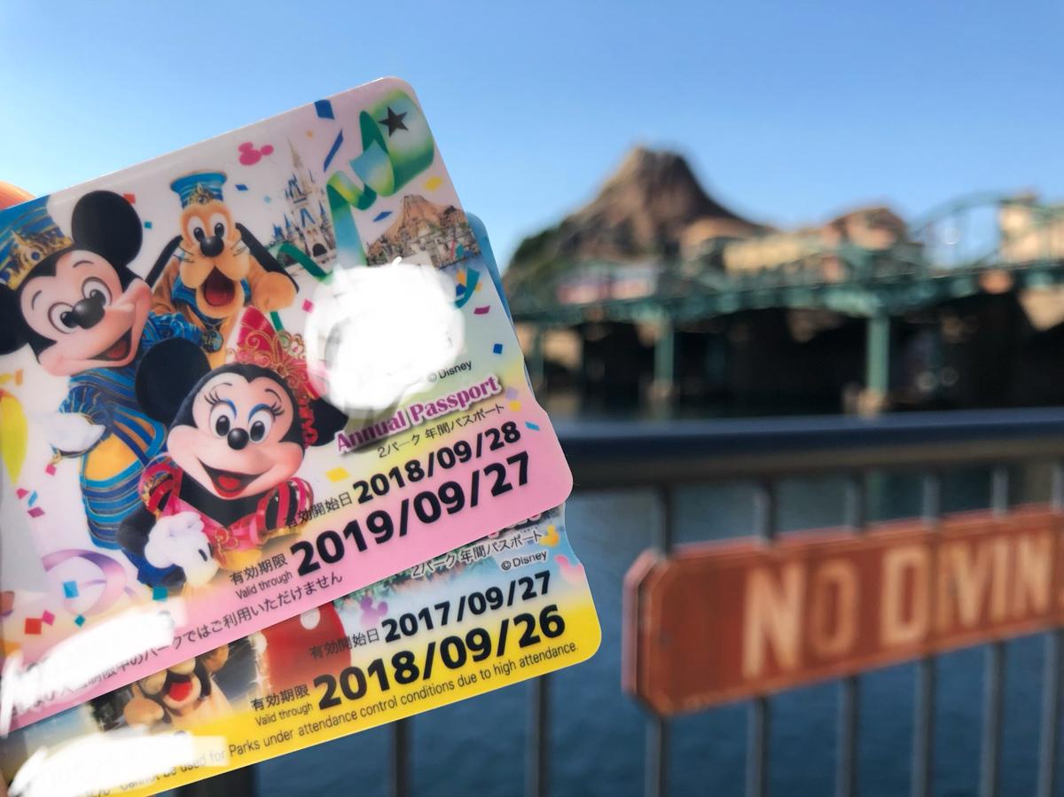 ディズニーシー ディズニーランド 年間パスポート 分割