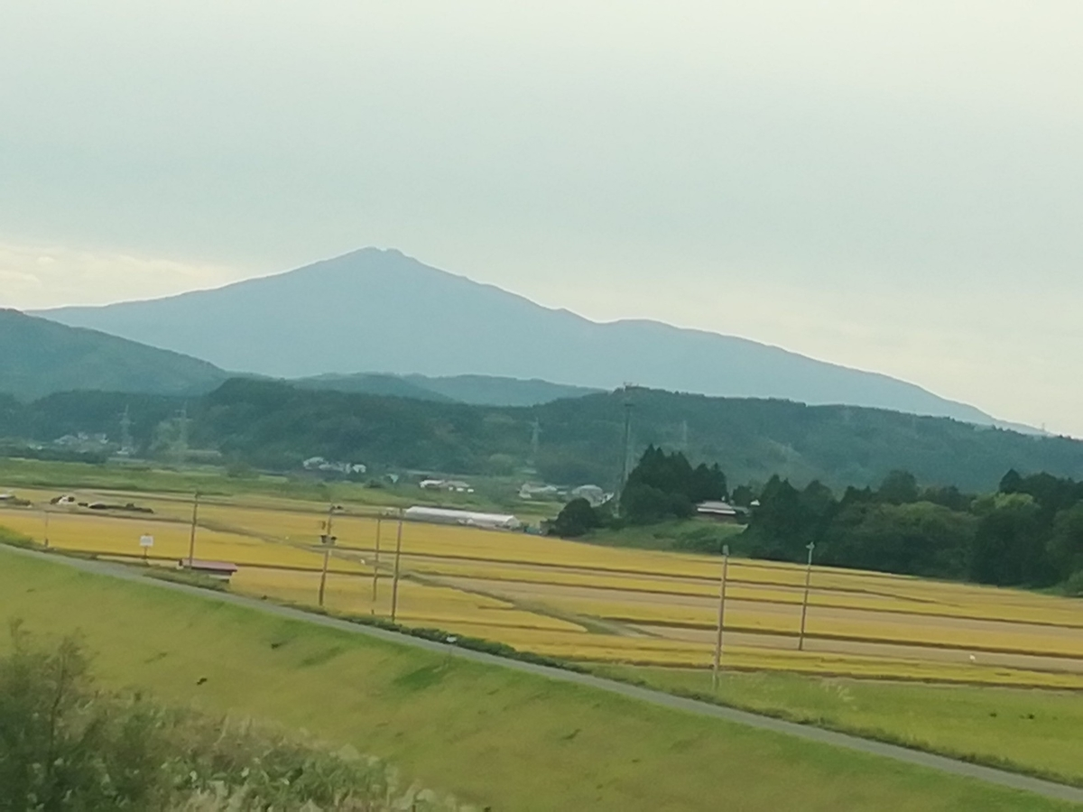 f:id:maple-enkyorikaigo:20190928162757j:plain