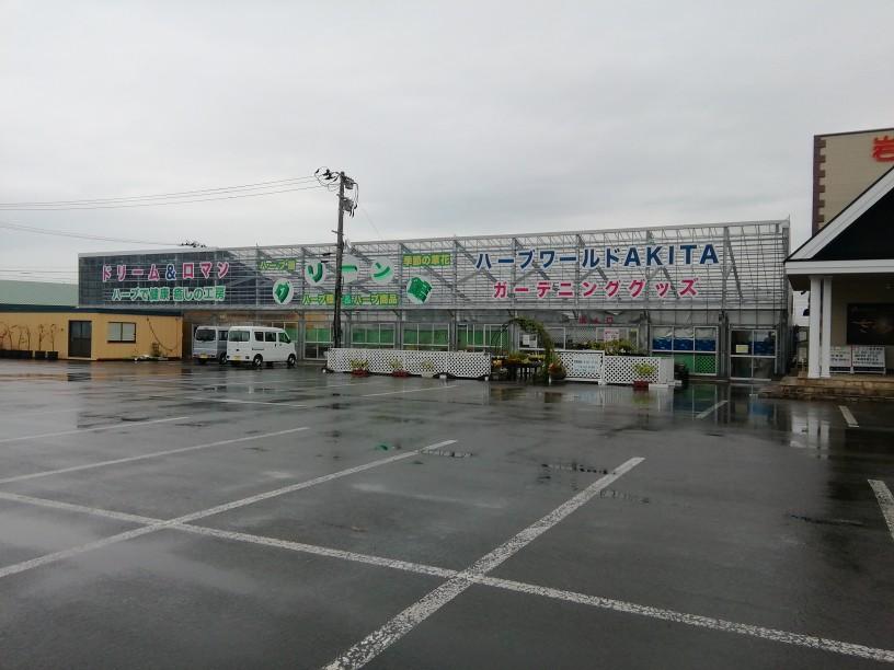f:id:maple-enkyorikaigo:20191002175137j:plain