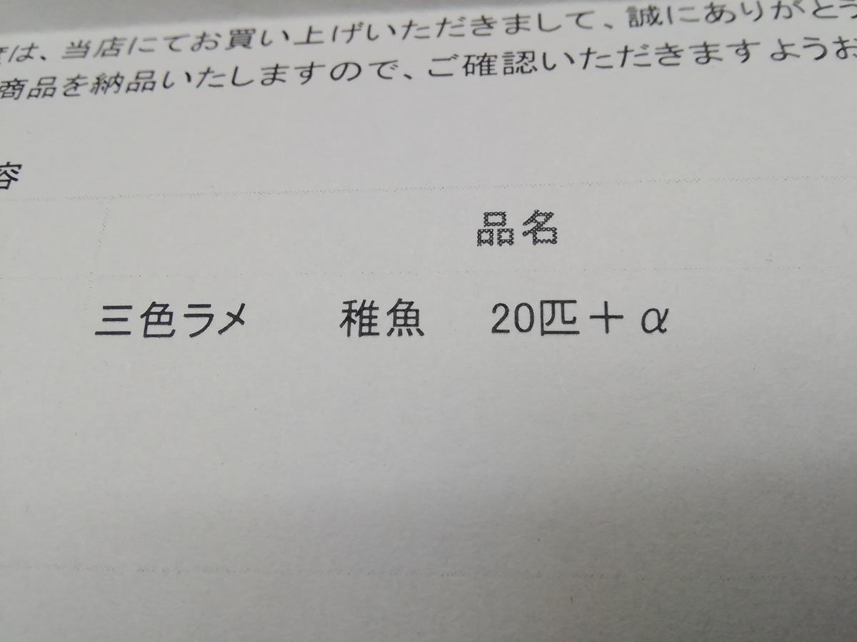 f:id:maple-enkyorikaigo:20200818211538j:plain