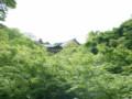 京都旅行38