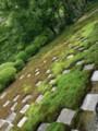 京都旅行46
