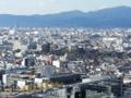 東寺の五重塔は近いので流石によく見える