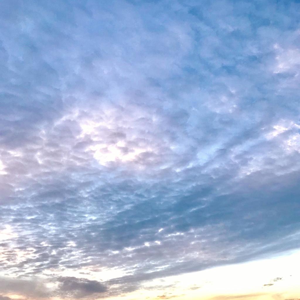 たぶん冬の空