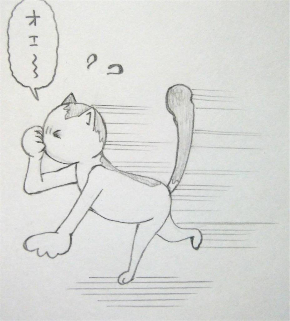 f:id:maricats:20190606205321j:image