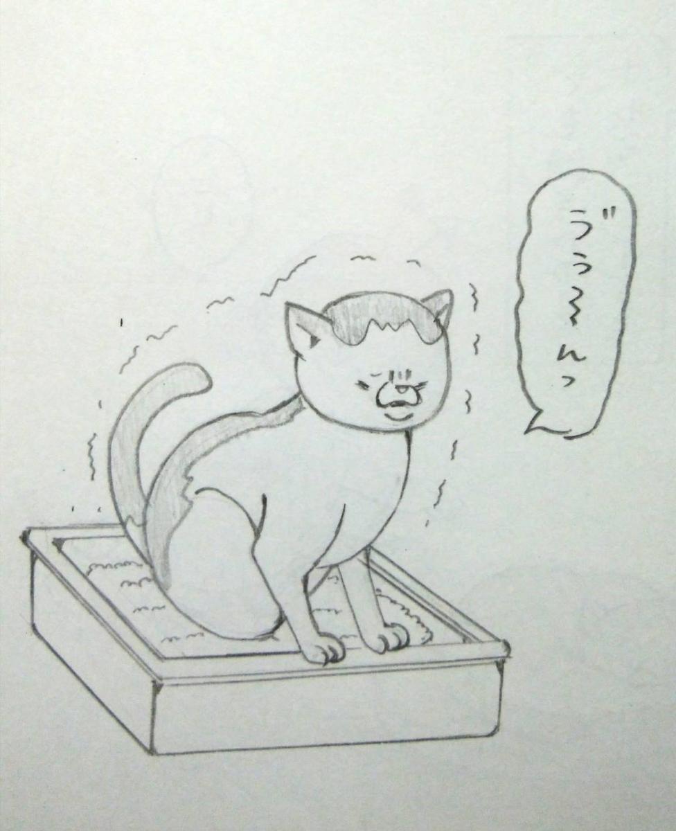 f:id:maricats:20190608202722j:plain