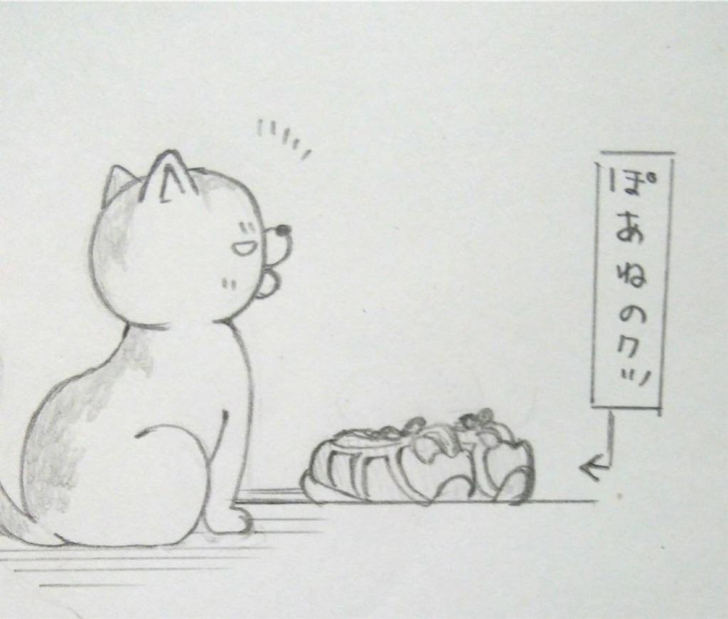 f:id:maricats:20190622215027j:image