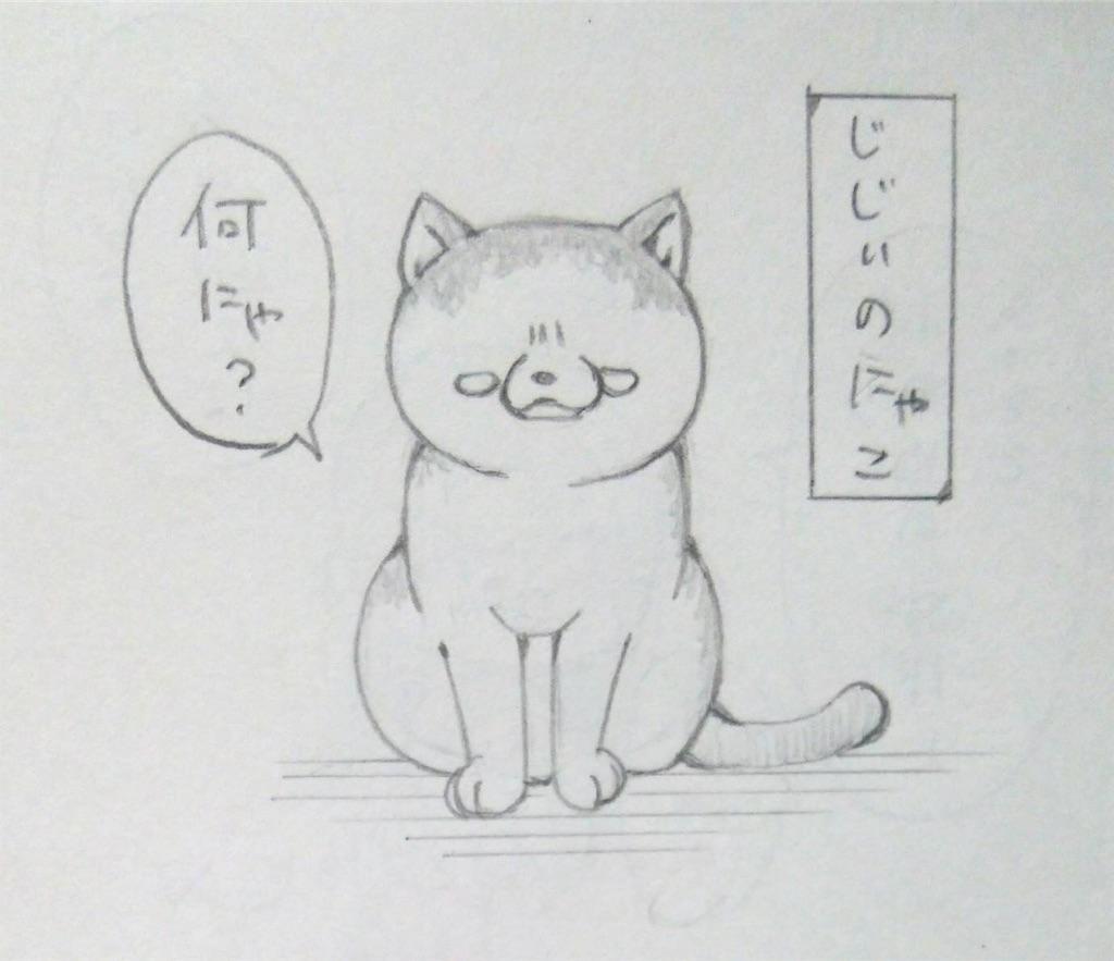 f:id:maricats:20190706135930j:image